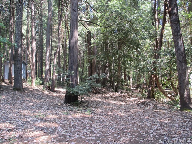 Land for Sale at 6234 Merry Way Clipper Mills, California 95930 United States