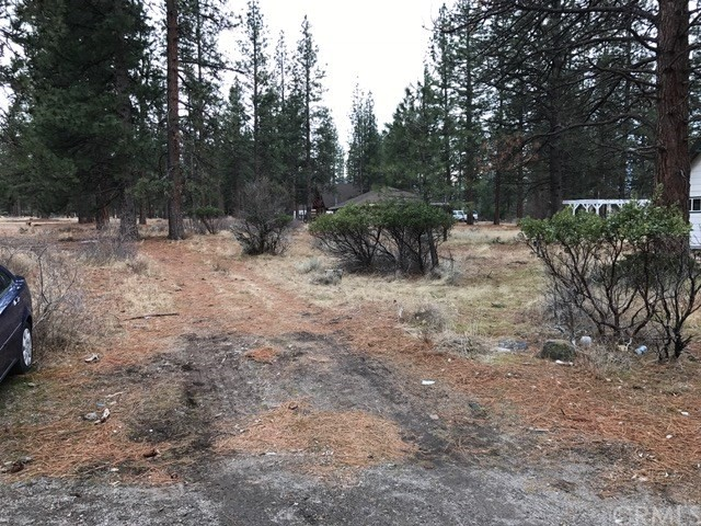 Single Family for Sale at 0 Lot 145 Coyote Court Weed, California 96094 United States