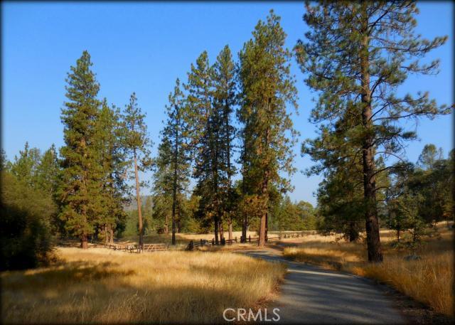 33005 Road 221, North Fork CA: http://media.crmls.org/medias/a0080055-4f6d-4482-b148-2778a49e57cf.jpg