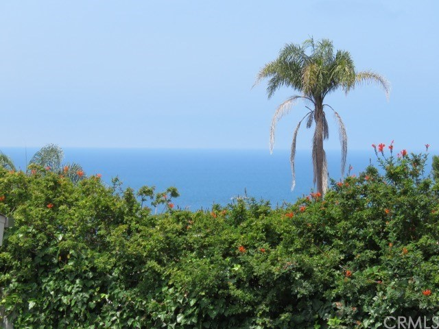 31522 West Street Laguna Beach, CA 92651 - MLS #: LG17168816
