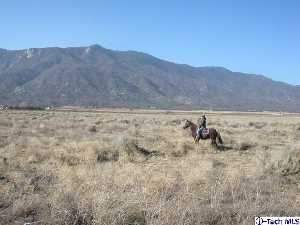 Williams, East of Johns Road Road Caliente, CA 93518 - MLS #: 316009254