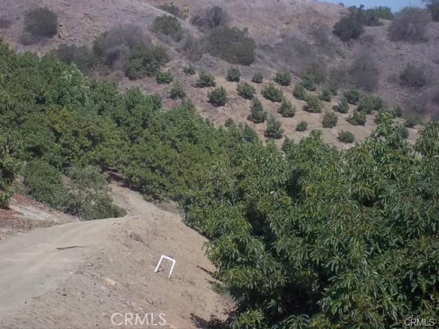43343 Via Vaquero, Temecula CA: http://media.crmls.org/medias/a0b6295f-2a67-49bf-b233-9344ce1720e6.jpg