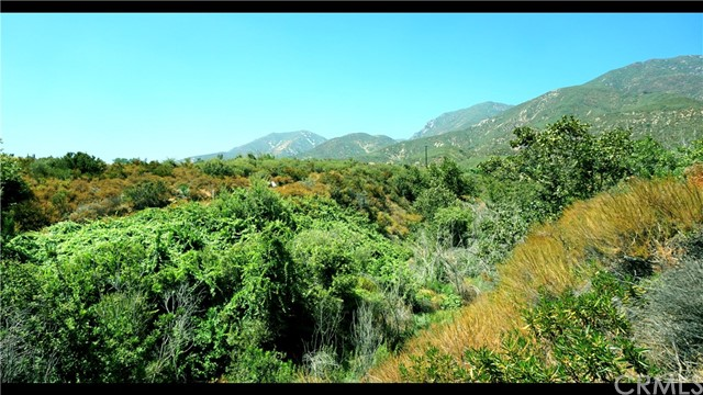 1551 Clear Springs Way Devore, CA 92407 - MLS #: CV18069101