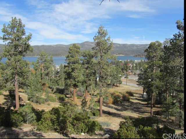 Single Family for Sale at 0 Paine Road Big Bear, California 92315 United States