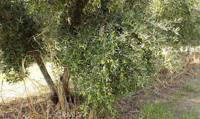 Terreno por un Venta en Rawson Road Corning, California Estados Unidos