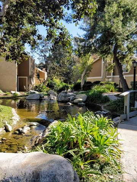 111 Lakepines, Irvine, CA 92620 Photo 15