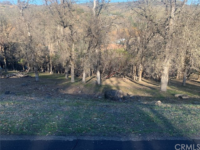 Detail Gallery Image 1 of 1 For 19450 Donkey Hill Rd, Hidden Valley Lake,  CA 95467 - – Beds   – Baths
