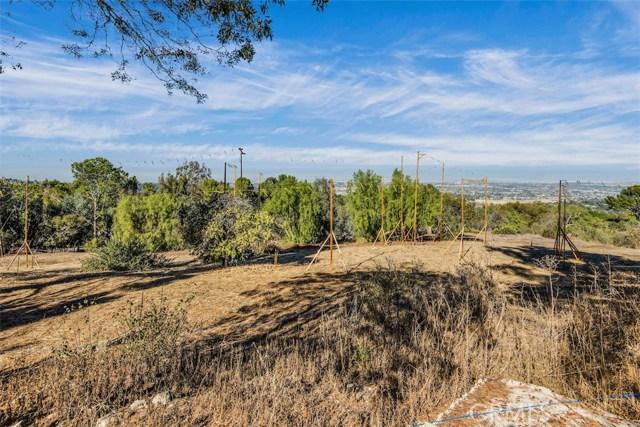5 PINE TREE LANE, ROLLING HILLS, CA 90274  Photo 8