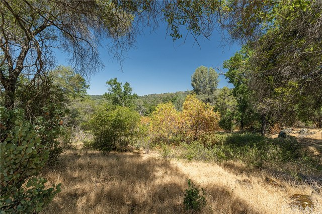 Detail Gallery Image 1 of 1 For 3974 Van Ness Rd, Mariposa,  CA 95338 - – Beds   – Baths