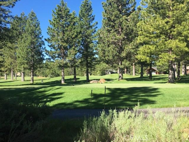 303 Durkin Drive Lake Almanor, CA 96137 - MLS #: CH17121211