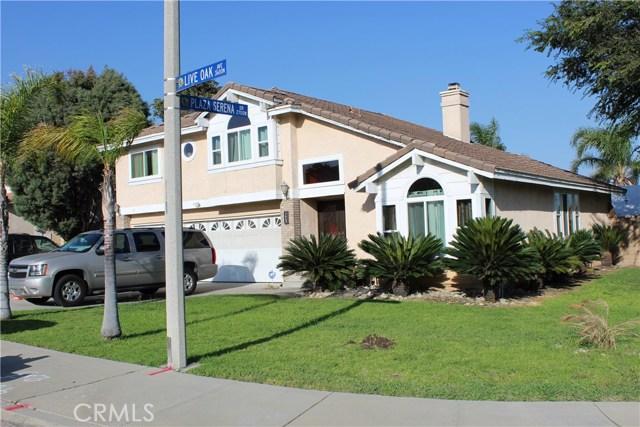 3669 N Live Oak Avenue, Rialto CA: http://media.crmls.org/medias/a4865f4c-2601-48b0-84cd-920e5b4aa879.jpg