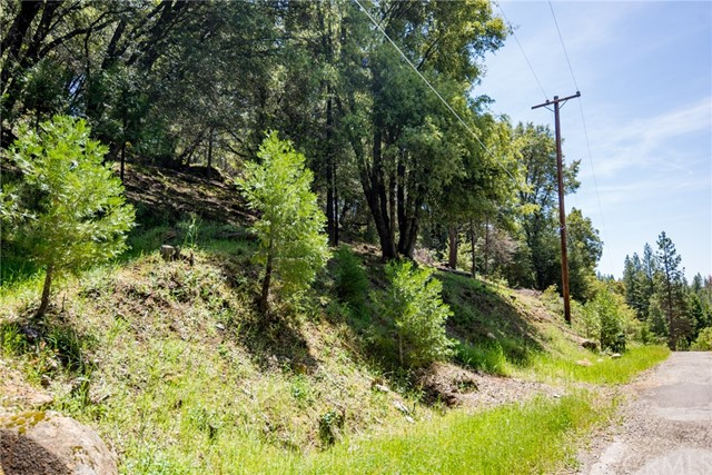 0 Cedar Ridge Circle, Oakhurst, CA, 93644