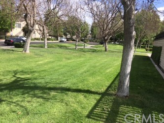 5 Smokestone, Irvine, CA 92614 Photo 18