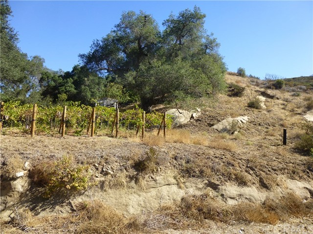 0 Jackson Ranch Road, Silverado Canyon CA: http://media.crmls.org/medias/a567b41b-5c3a-4f0d-8461-123945ba75d8.jpg