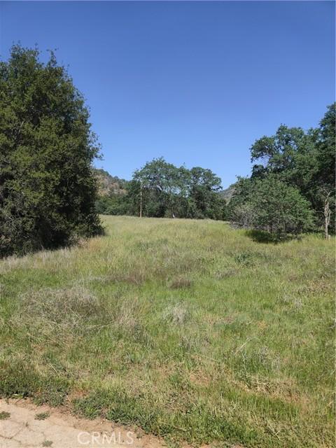 0 Crane, Squaw Valley CA: http://media.crmls.org/medias/a5a894e1-423e-4bde-9f58-4619e33f9f77.jpg