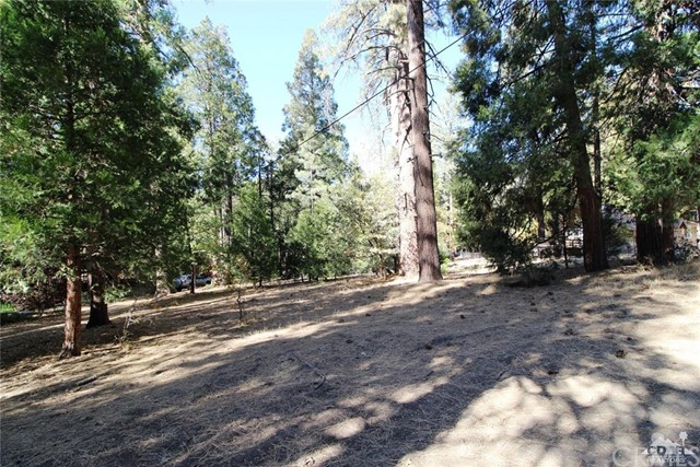 Land for Sale at Marian View Marian View Idyllwild, California 92549 United States