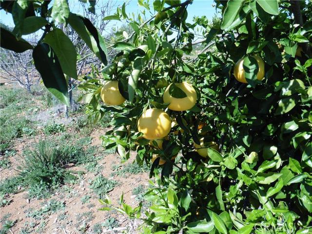 3911 Aspen Road, Fallbrook CA: http://media.crmls.org/medias/a651a6e9-f62b-4b5b-9ea8-8616beb1bd41.jpg