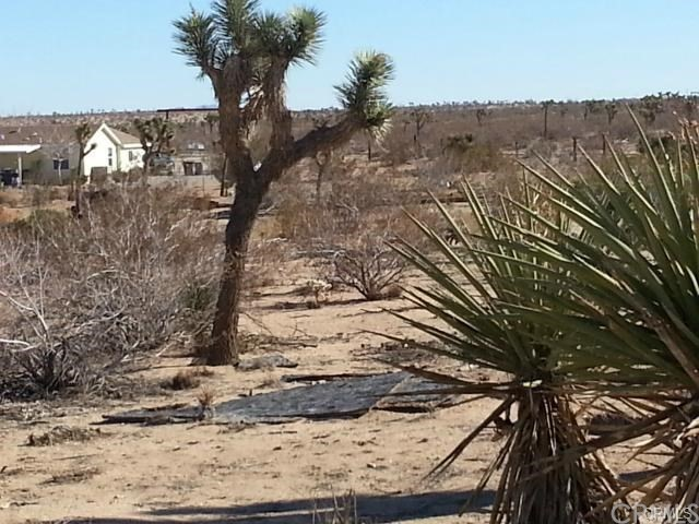 55931 Wood Drive Yucca Valley, CA 92284 - MLS #: SW17239684