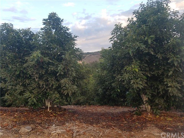 0 Sandia Creek Dr, Temecula, CA  Photo 32