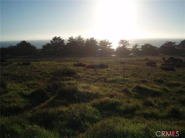 6785 Cambria Pines Road, Cambria CA: http://media.crmls.org/medias/a6b5eba4-3e36-40bf-ba2b-622454c2cda0.jpg