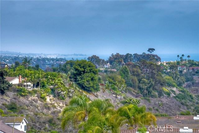 Dana Point Homes for Sale -  Panoramic View,  33042  Ocean Ridge