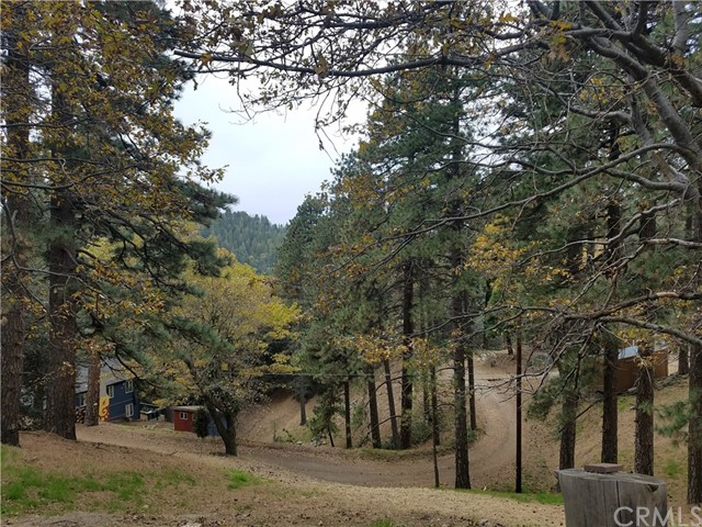 0 Elliot Road, Crestline CA: http://media.crmls.org/medias/a819af0a-d87c-4885-87a9-0a781e356fea.jpg