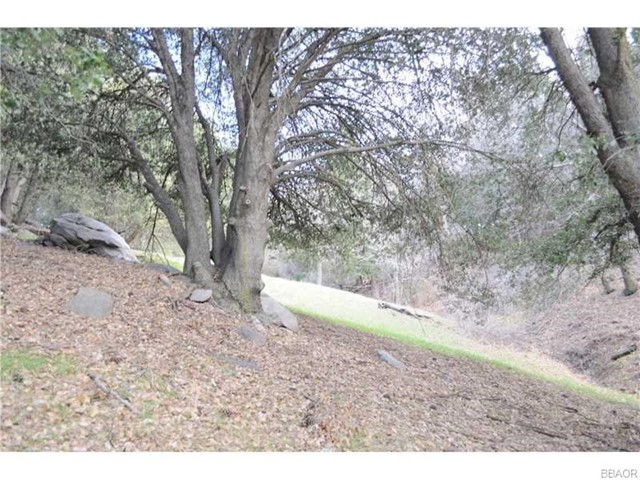 0 Mojave River Road, Cedarpines Park CA: http://media.crmls.org/medias/a8866b2e-3b16-4f59-881a-b64ebfbf0a34.jpg