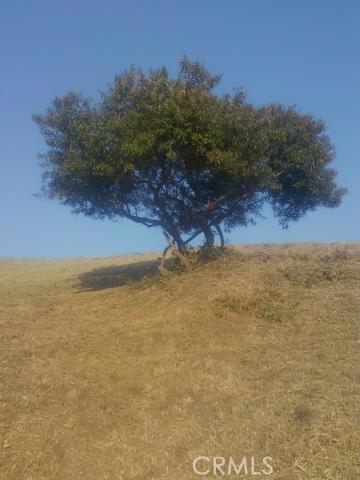 0 AREA OF CLIFTON & THOMAS, Montecito Heights CA: http://media.crmls.org/medias/a8c76683-31d7-4ede-925f-c86770a112ea.jpg