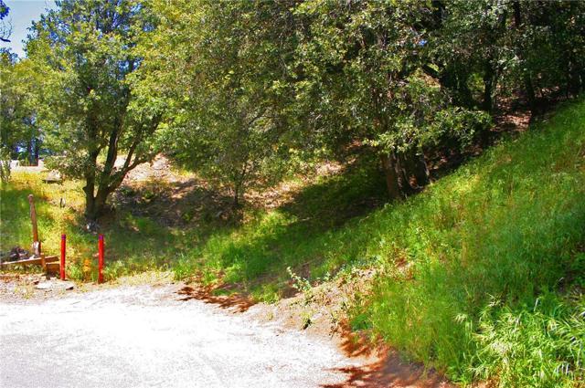 0 Berne Drive, Crestline CA: http://media.crmls.org/medias/a92126fd-2a3a-4eec-ad12-aae280663c89.jpg
