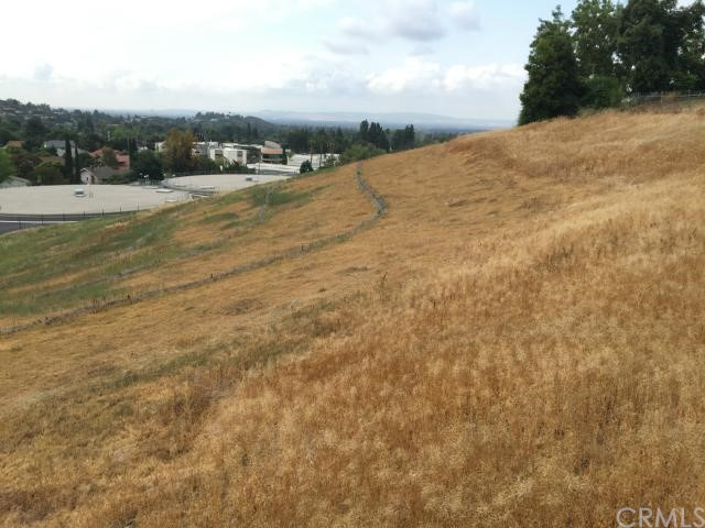 13221 Cole Lane, North Tustin CA: http://media.crmls.org/medias/aa249014-c7f9-470a-9c8e-8f3b5da1a1eb.jpg