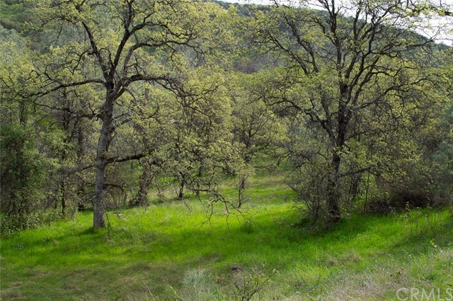 Land for Sale at 7493 Redhill Way Browns Valley, California 95918 United States