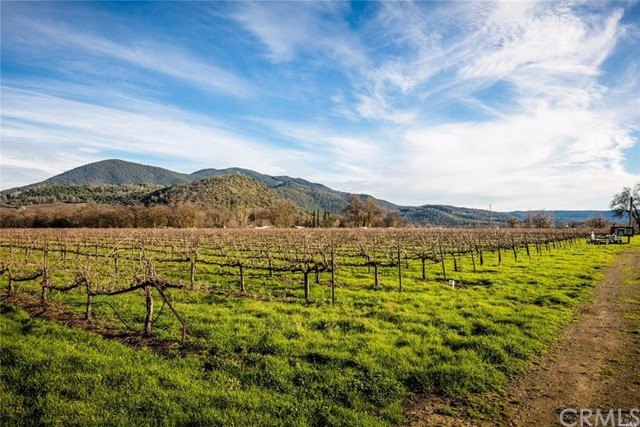 stone creek vineyards analysis Find 30 listings related to stone creek wines in napa on ypcom see reviews, photos, directions, phone numbers and more for stone creek wines locations in napa, ca.
