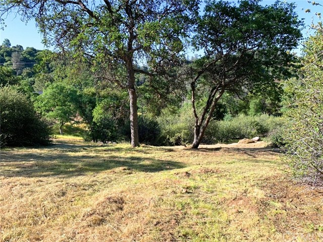 3311 Deer Run Road, Mariposa, CA, 95338