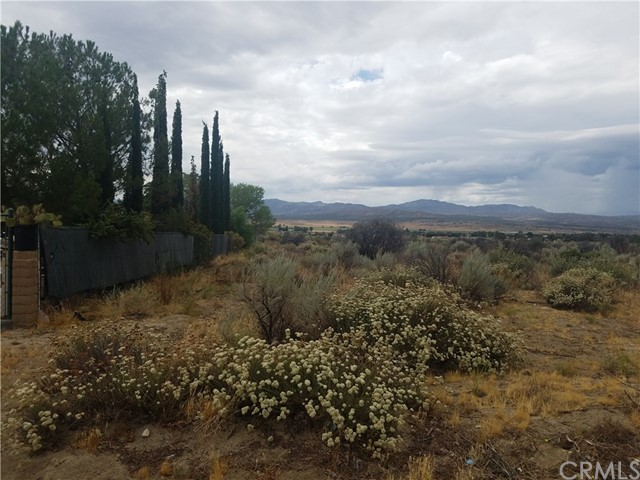 Land for Sale at Mitchell Road Anza, California 92539 United States