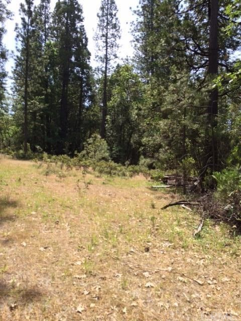 0 Graystone Lane, Berry Creek CA: http://media.crmls.org/medias/ac5f02e5-13ef-4d57-912c-9d0ee29300d1.jpg