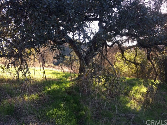 9 La Cruz, Temecula, CA 92590 Photo 21