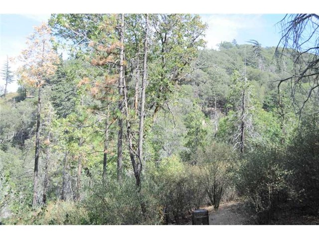 Single Family for Sale at 0 Mojave River Road Cedarpines Park, California United States