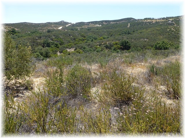 0 Via View, Temecula, CA  Photo 17