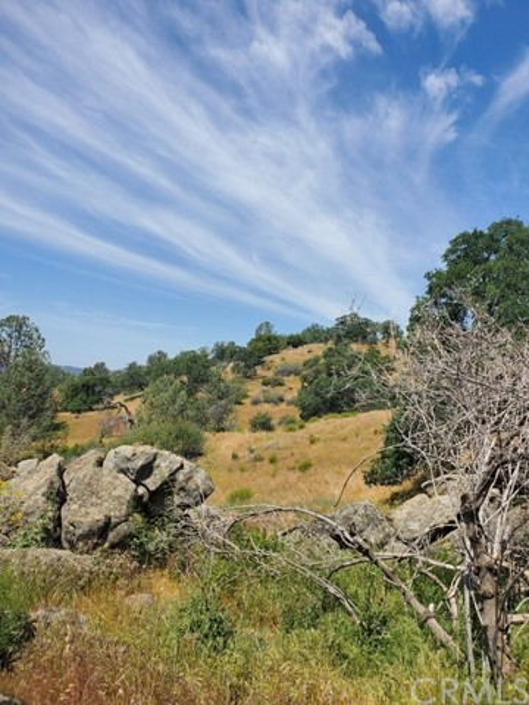 0 Lot 1952 Ranger Circle Drive, Coarsegold CA: http://media.crmls.org/medias/ad398530-d8fd-4b67-81fd-18d2cd44449e.jpg