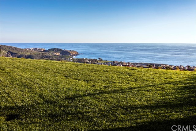 Additional photo for property listing at 35 Offshore  Newport Coast, California 92657 United States