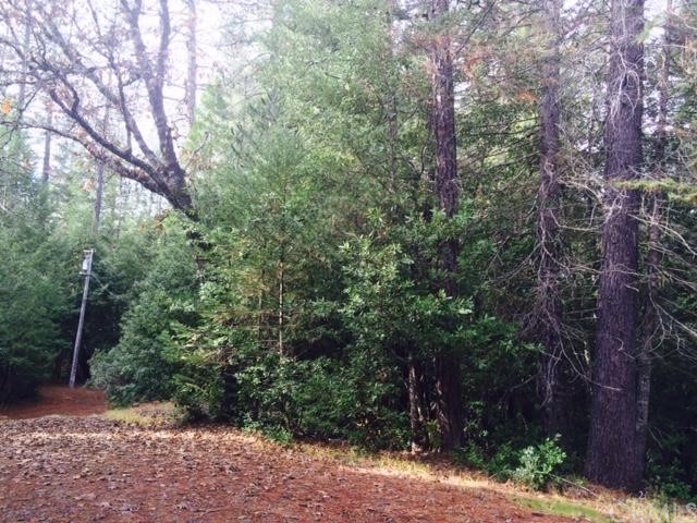 0 Forest Glade, Berry Creek CA: http://media.crmls.org/medias/adb9fbe8-3738-4561-8e58-12bf92fc5670.jpg