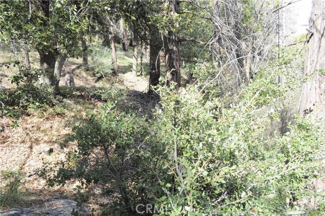 0 Mojave River Road, Cedarpines Park CA: http://media.crmls.org/medias/aeb8de3f-048b-4867-ba83-c5e310783d65.jpg