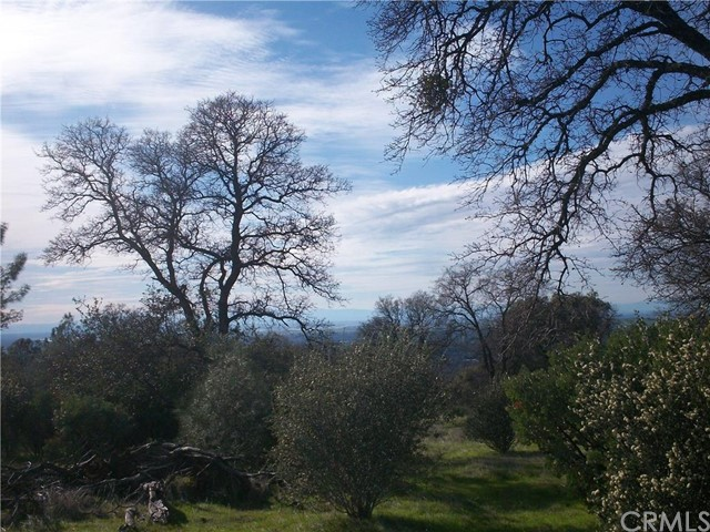 Single Family for Sale at 0 Olive Highway S Oroville, California 95966 United States