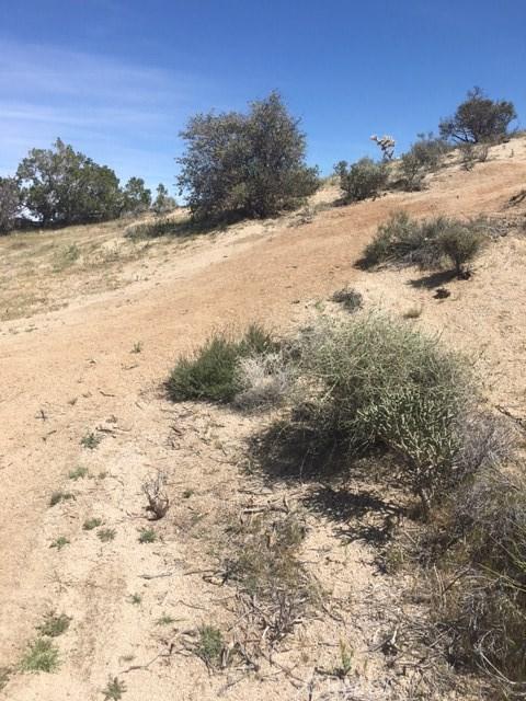 0 Panchita, Yucca Valley CA: http://media.crmls.org/medias/aeffaa2c-5ee8-47b7-9d19-09ee79603e74.jpg