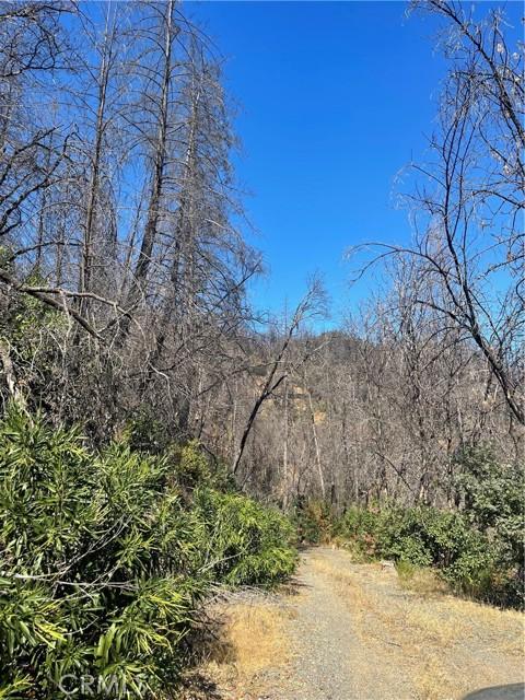 12657 Elk Mountain Road, Upper Lake CA: http://media.crmls.org/medias/af8525b0-ed57-4ccf-9fb7-c563ea272b0b.jpg