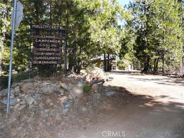 土地 为 销售 在 21610 Malloy Creek Trail Butte Meadows, 加利福尼亚州 95942 美国