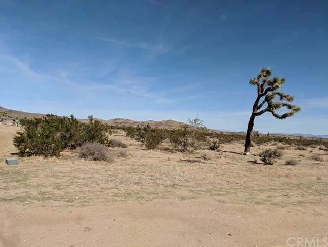 0 CIELITO RD, JOSHUA TREE, CA 92252  Photo 3