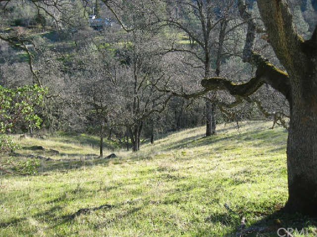 Additional photo for property listing at 0 Dry Creek  Butte Valley, California 95965 United States