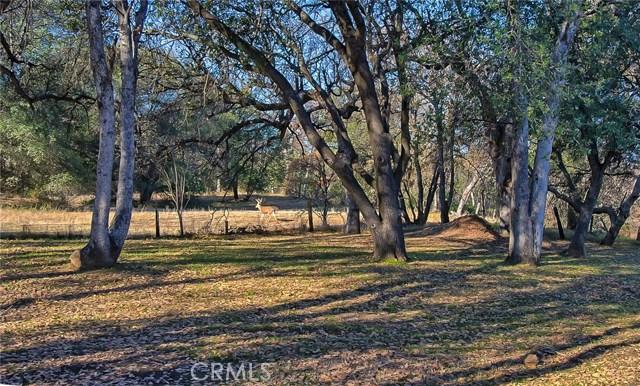 18601 Stallion Drive Red Bluff, CA 96080 - MLS #: PA18291634