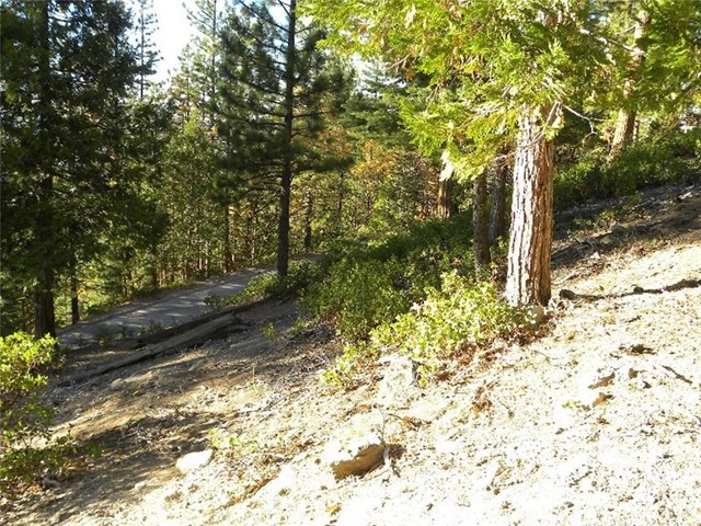 7486 Henness Ridge Road Yosemite, CA 95389 - MLS #: YG17147139